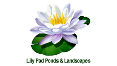 Lily Pad Ponds & Landscapes