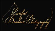Purrfect Boudoir Photography