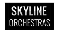 Code Blue (Skyline Orchestras)