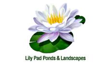 Lily Pad Ponds & Landscapes